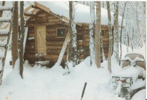 Sonya's Cabin